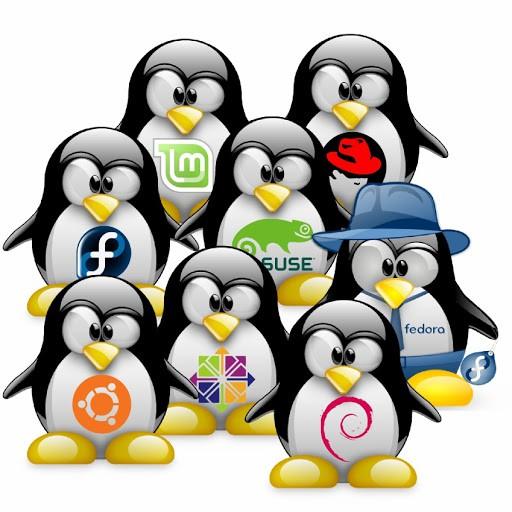 Hệ điều hành Linux và các ưu điểm vượt trội